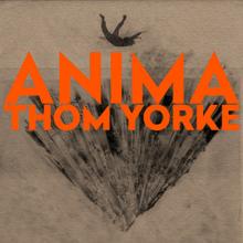 Dawn Chorus – Thom Yorke: testo e traduzione canzone