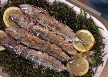 La prova del cuoco sgombri ripieni mediterranea